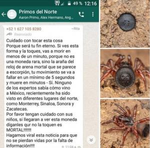 LA FAKE NEWS EN TORNO A LA ARAÑA «RELOJ DE ARENA»