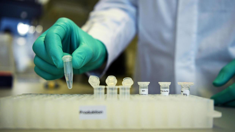Acusa Alemania a Trump de «apropiarse» de la vacuna contra COVID-19