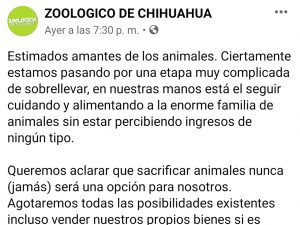 Covid-19 afecta a animales del zoológico de Chihuahua