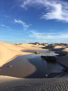 Increíble: Captan agua las dunas de Samalayuca