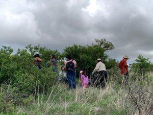 Investigadores de la UACH buscan cura al Covid-19 con plantas medicinales