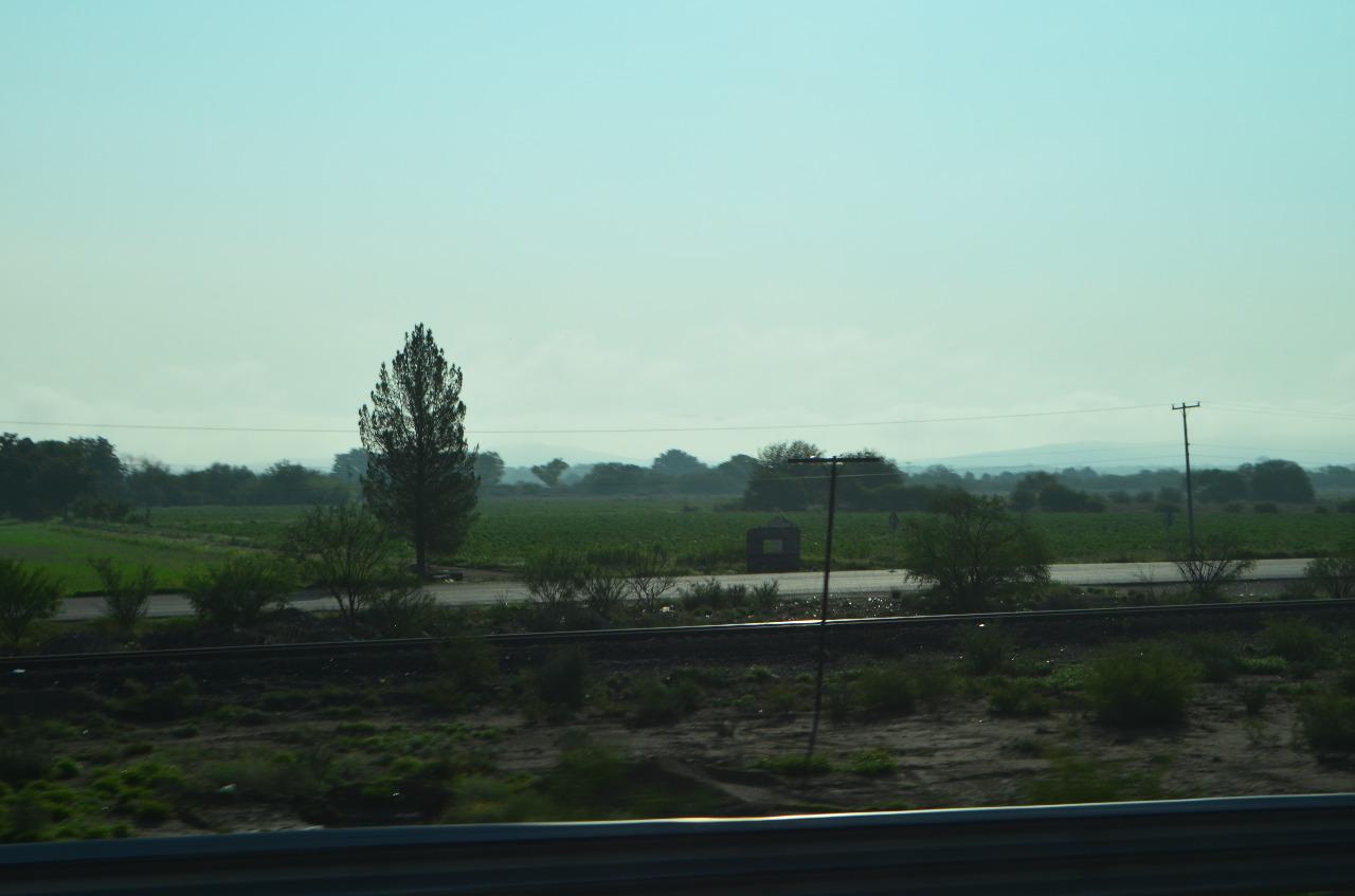 Aseguradas las cosechas de la presente temporada agrícola en Chihuahua: Conagua