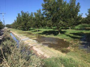Muestra Conagua extracción ilegal de agua en Camargo para riego de nogaleras