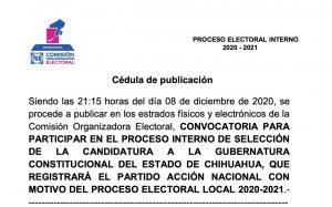 Militancia decidirá la candidatura a la gubernatura: PAN