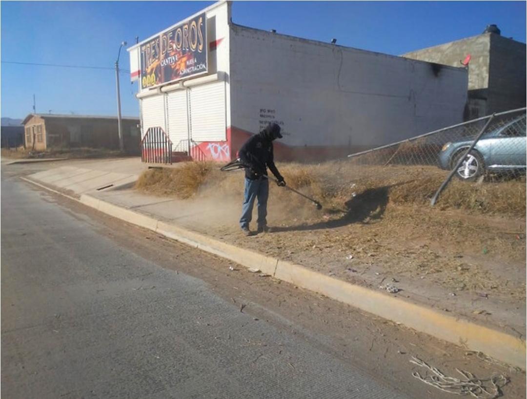 Atienden brigadas de limpieza del Municipio calles en distintas colonias de la ciudad